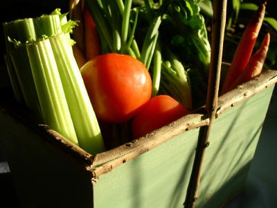 harvestbasket.jpg